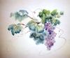 Dihel_grapes
